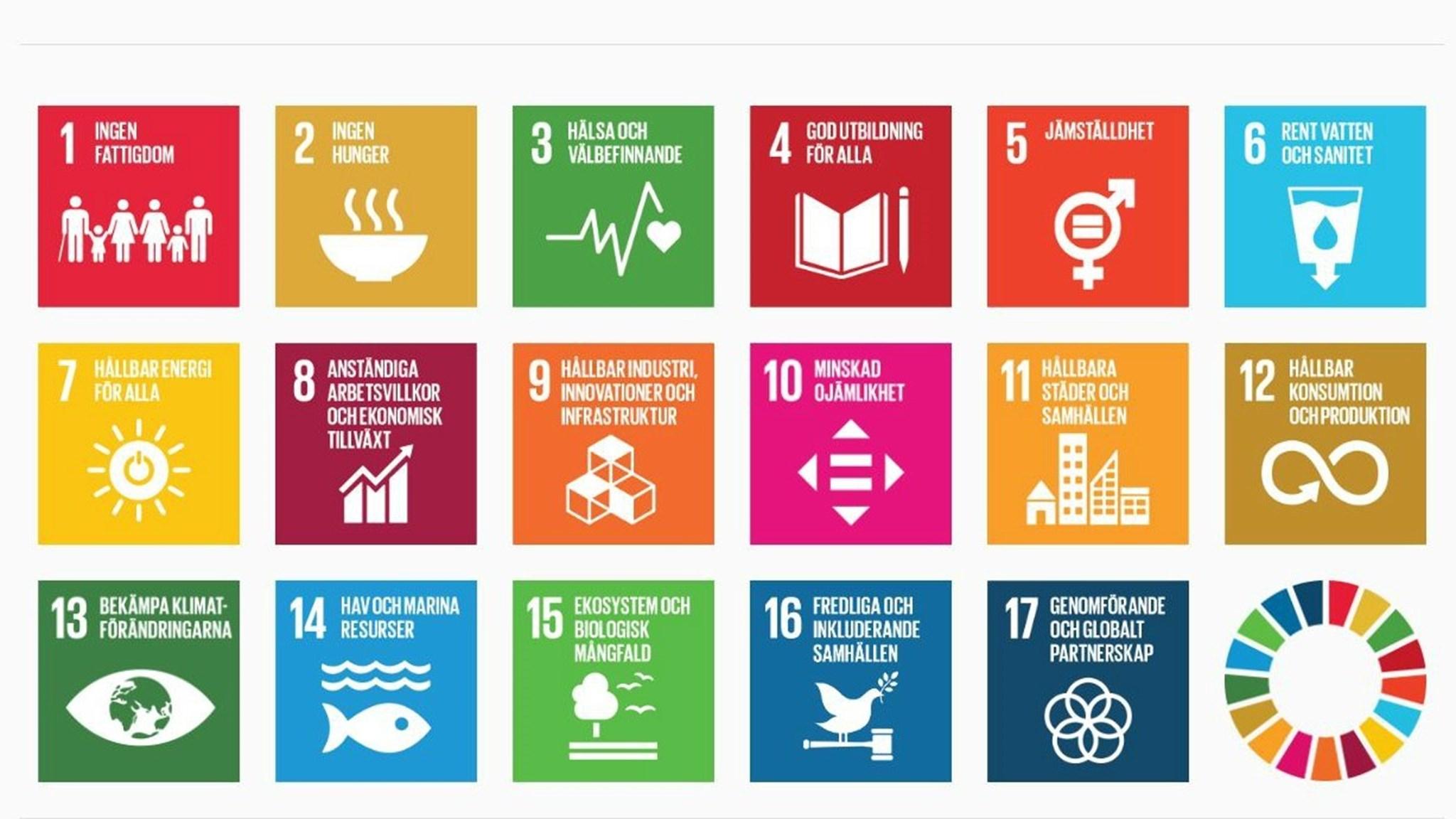 De globala målen